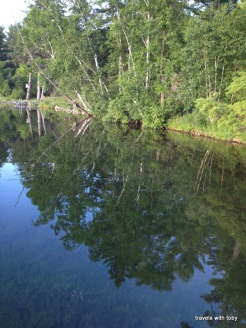 11th Crow Wing Lake-trees reflection
