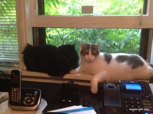 Fritz and Eddie