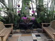 A perfect place to sit and enjoy the gorgeous orchids