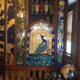 beautiful peacock in the entryway of Babani's Kurdish Restaurant in St. Paul