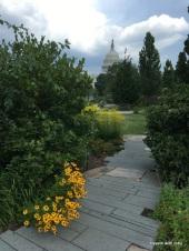 outside the U.S. Botanic Garden