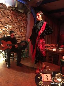 fantastic flamenco show! (Málaga)