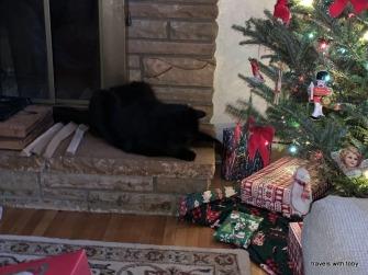 Frankie likes Christmas